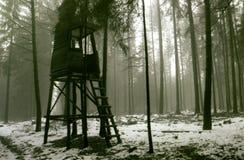 De indruk van de winter Royalty-vrije Stock Foto
