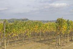 De Indrukken van Toscanië royalty-vrije stock afbeeldingen