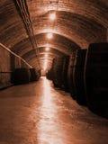 De industrie van de wijn Stock Afbeelding
