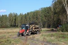 De industrie van het timmerhout stock foto