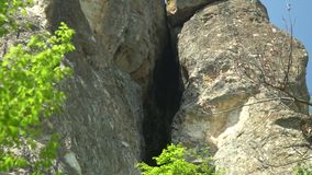 De ingang aan het uterushol dat ook als Utroba-hol in Bulgarije wordt bekend stock videobeelden