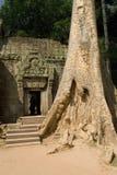 De Ingang van de tempel Stock Fotografie