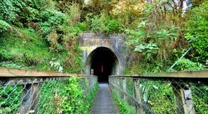 De Ingang van de tunnel Stock Fotografie