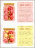 De ingeblikte Vastgestelde Vectorillustratie van het Tomatenvoedsel royalty-vrije illustratie