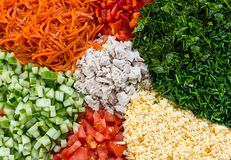 De ingelegde van de de peperkaas en kip van de wortelentomaat vastgestelde van de groentenbloemblaadjes van salade cobb porties h royalty-vrije stock foto