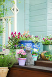 De ingemaakte bloemen van de zomer en tuinloods royalty-vrije stock fotografie
