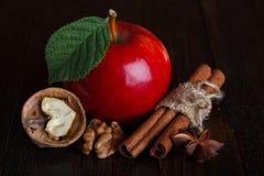 De ingrediënten van de cider Stock Foto's