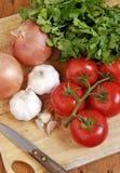 De ingrediënten van de saus Stock Afbeelding