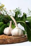 De ingrediënten van groenten in het zuur Stock Fotografie