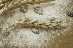 De ingrediënten van het brood Royalty-vrije Stock Foto