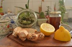 De ingrediënten van het de wintert-stuk bij keukenteller Stock Foto