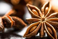 De IngrediëntenPijpjes kaneel Anise Star Cloves Cardamom Scattered van het Kerstmisbaksel op Houten Macro Als achtergrond van Det stock fotografie