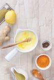 De ingrediënten van de kurkumamelk Stock Foto's