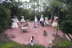 De inheemse cultuur toont in Disneyland, Walt Disney-wereld stock foto's