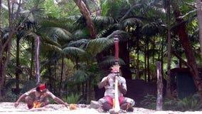 De inheemse cultuur toont in Queensland Australië stock footage