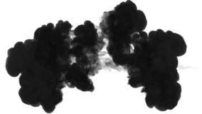 De inkt lost in water op witte achtergrond met lumasteen op 3d geef van computersimulatie terug De zwarte inkt spuit in water in stock footage