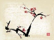 De inkt van de kersenbloesem het schilderen vector illustratie