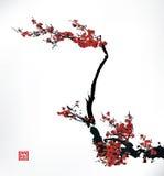 De inkt van de kersenbloesem het schilderen royalty-vrije illustratie