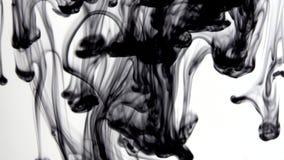 De inktmassa's zijn zeer geconcentreerd in water stock video
