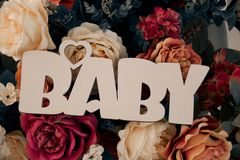 De inschrijving 'BABY 'tegen de achtergrond van multi-colored rozen royalty-vrije stock foto