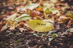 De inschrijving het eind op het gele de herfstblad in een hoop van gele bladeren Gevallen verspreide bladeren Het concept de herf royalty-vrije stock foto's