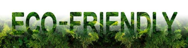 De inschrijving Milieuvriendelijk op de achtergrond van een wortelaanplanting Milieuvriendelijke oogst, kwaliteitscontrole Jongel royalty-vrije stock foto