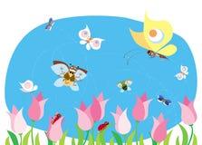 De insecten van de lente Stock Foto