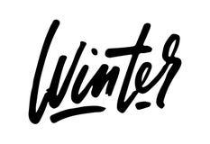 De inspiratiecitaten van de de winterlevensstijl het van letters voorzien Het met de hand geschreven element van het kalligrafie  Royalty-vrije Stock Afbeeldingen