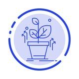 De installatie, groeit, Gegroeid, de Lijnpictogram van de Succes Blauw Gestippelde Lijn stock illustratie