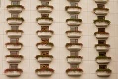 De installatie van de bloem bij venstersvensterbank Royalty-vrije Stock Foto