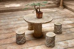 De installatie van de bonsai op lijst Stock Afbeeldingen