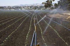 De installatie van de irrigatie Stock Afbeeldingen