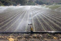 De installatie van de irrigatie Royalty-vrije Stock Fotografie