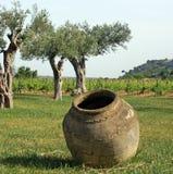 De installatie van de kruik en van de wijn Stock Foto's