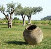 De installatie van de kruik en van de wijn Stock Fotografie