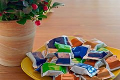 De installatie van Gaultheria met gekleurd suikergoed Royalty-vrije Stock Fotografie