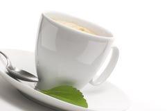 De installatie van Stevia en koffiekop stock foto's