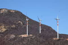 De installaties van de windenergie in Caatinga van Brazilië royalty-vrije stock foto