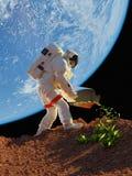 De installaties van het astronautengras Royalty-vrije Stock Afbeelding