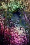 De installatiesachtergrond van het bamboe Royalty-vrije Stock Afbeeldingen