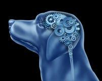 De Intelligentie van de hond Stock Afbeeldingen