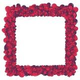 De invasieframe van harten Royalty-vrije Stock Foto