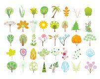 De inzameling van bomen Stock Foto