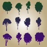 De inzameling van bomen Stock Afbeeldingen