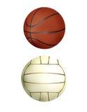 De inzameling van de bal - handbal & basketbal Stock Foto