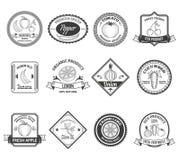 De inzameling van de etikettenpictogrammen van fruitgroenten Stock Fotografie