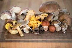 De inzameling van de herfst Kleurrijke pompoen op de lijst Royalty-vrije Stock Afbeeldingen