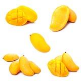 De inzameling van de mango Stock Afbeelding