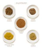 De Inzameling van de mosterd   stock fotografie
