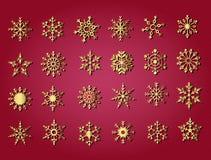 De Inzameling van de sneeuwvlok Royalty-vrije Stock Afbeeldingen